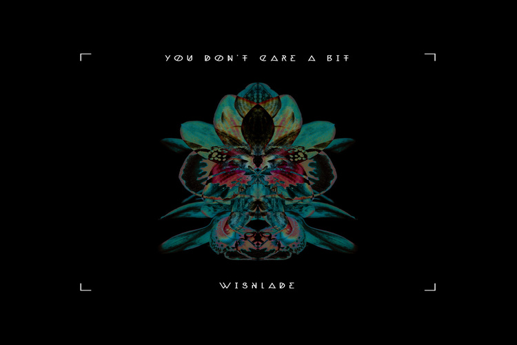 you-dont-care-a-bit-wishlade750x500